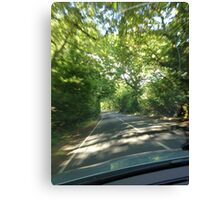 Countryside driving Canvas Print