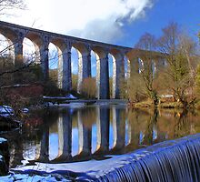 Cefn Viaduct and Weir by Clive  Rees