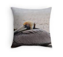 Pelican Squash Throw Pillow