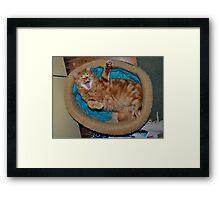 Tommy Waving  Framed Print
