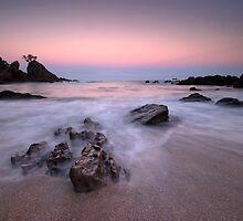 Onemana Scenic Reserve by Michael Treloar