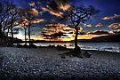 Milarrochy Bay by Roddy Atkinson