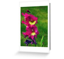 Pink Glads Greeting Card