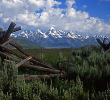 Teton and Fence #4 by Mike Norton