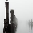 A Foggy Evening on the Wharf by Kristina Gale