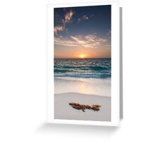 Quinns Sunset Greeting Card