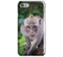Balinese Macaque. iPhone Case/Skin