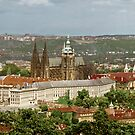 Prague Castle - St. Vitus Cathedral by J O'Neal