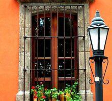 Window with geraniums -San Miguel de Allende by Janean  Gieseler