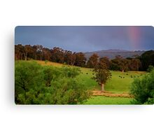 Warm Glow,Otway Farmlands Canvas Print