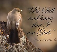 Be Still by Kathleen  Bowman