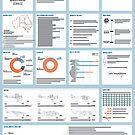 Information Design by Emma Gene Shanks