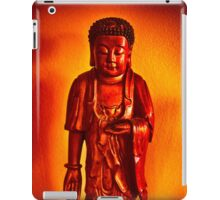 Peaceful Spot iPad Case/Skin
