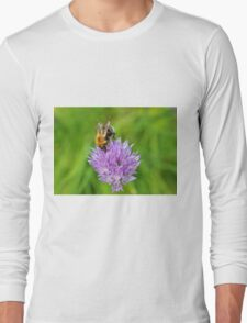 Bee & Chives Long Sleeve T-Shirt