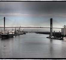 Savannah River by Cyn Piromalli