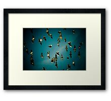 The Flight of the Valkyries Framed Print
