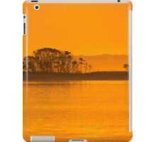 Placid Morning iPad Case/Skin
