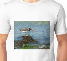 Oyster Catching Unisex T-Shirt