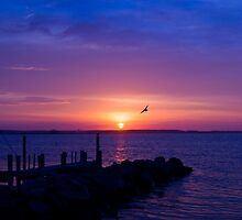 Promise by JoeGeraci