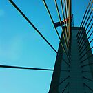 Look up - Anzac Bridge by Tisa