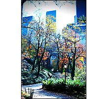 Patchwork Fall Photographic Print