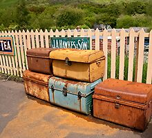 Vintage Luggage by Liberty Benedict