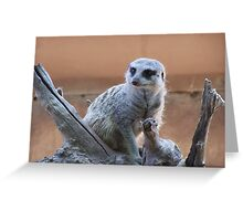 Whats Up? Greeting Card