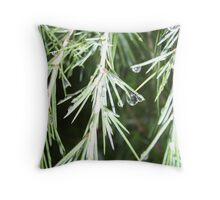 And Heaven Sent the Rains  Throw Pillow