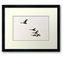 Powered Flight Framed Print