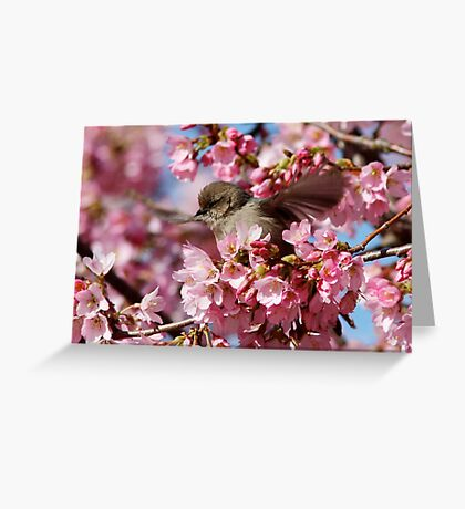 Springtime Makes Me Want to Spread My Wings Greeting Card