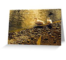 Two Duckies Greeting Card