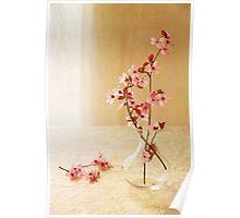 Plum Blossom Still Life Poster