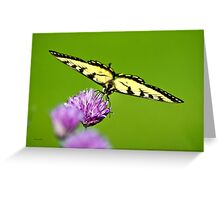 Balanced Butterfly Greeting Card