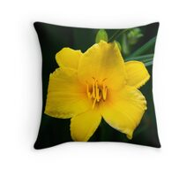 Yellow Daylily Flower Art Throw Pillow