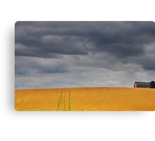 Fields on a stormy weather Canvas Print