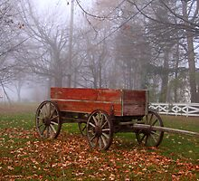 Cart in the mist by snehit