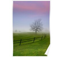 Single tree caught in the winter fog Poster
