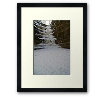 Frozen French Canyon Framed Print