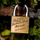 Locked in Love by Malcolm Katon