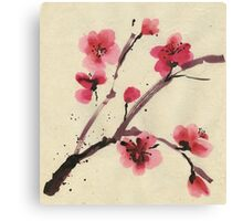 Flowering cherry. Spring. Canvas Print