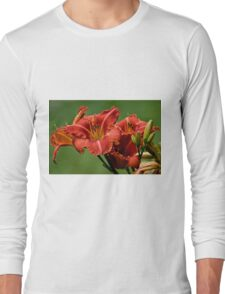 "Daylily ""Raging Wildfire"" Long Sleeve T-Shirt"