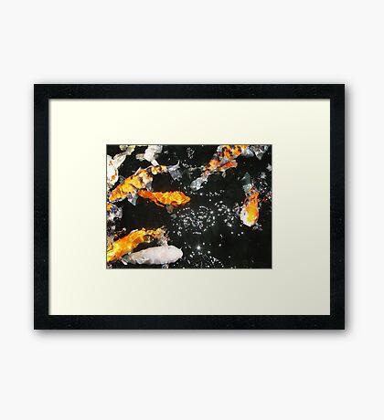 Koi and Stars Framed Print
