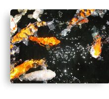 Koi and Stars Canvas Print