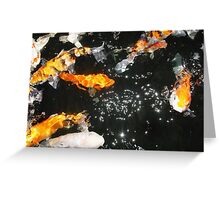 Koi and Stars Greeting Card
