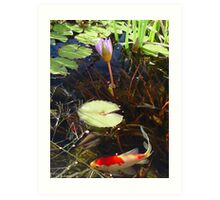 Koi and Waterlily Art Print