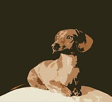 Classic Doxie by Nicole Meyer