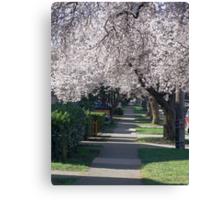 Sidewalk Canopy Canvas Print