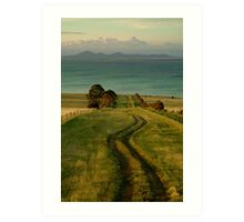 Spray Farm Lane,Bellarine Peninsula Art Print