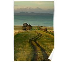 Spray Farm Lane,Bellarine Peninsula Poster