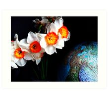 narcissi on top of the world. Art Print